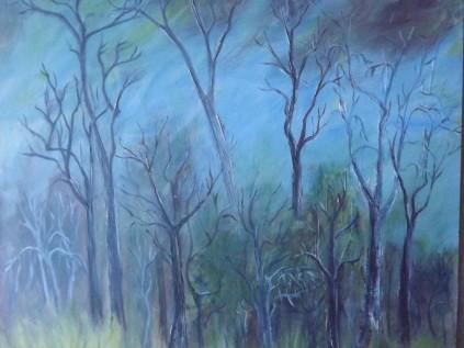 Australian Grey Scrub